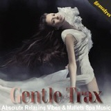 gemafreie CD - Gentle Trax - Absolute Relaxing Vibes & Mallets Spa Music