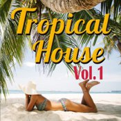 gemafreie CD - Tropical House Music Vol. 1